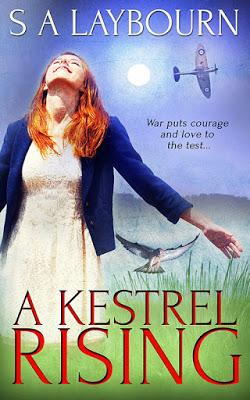 A Kestrel Rising: S A Laybourn